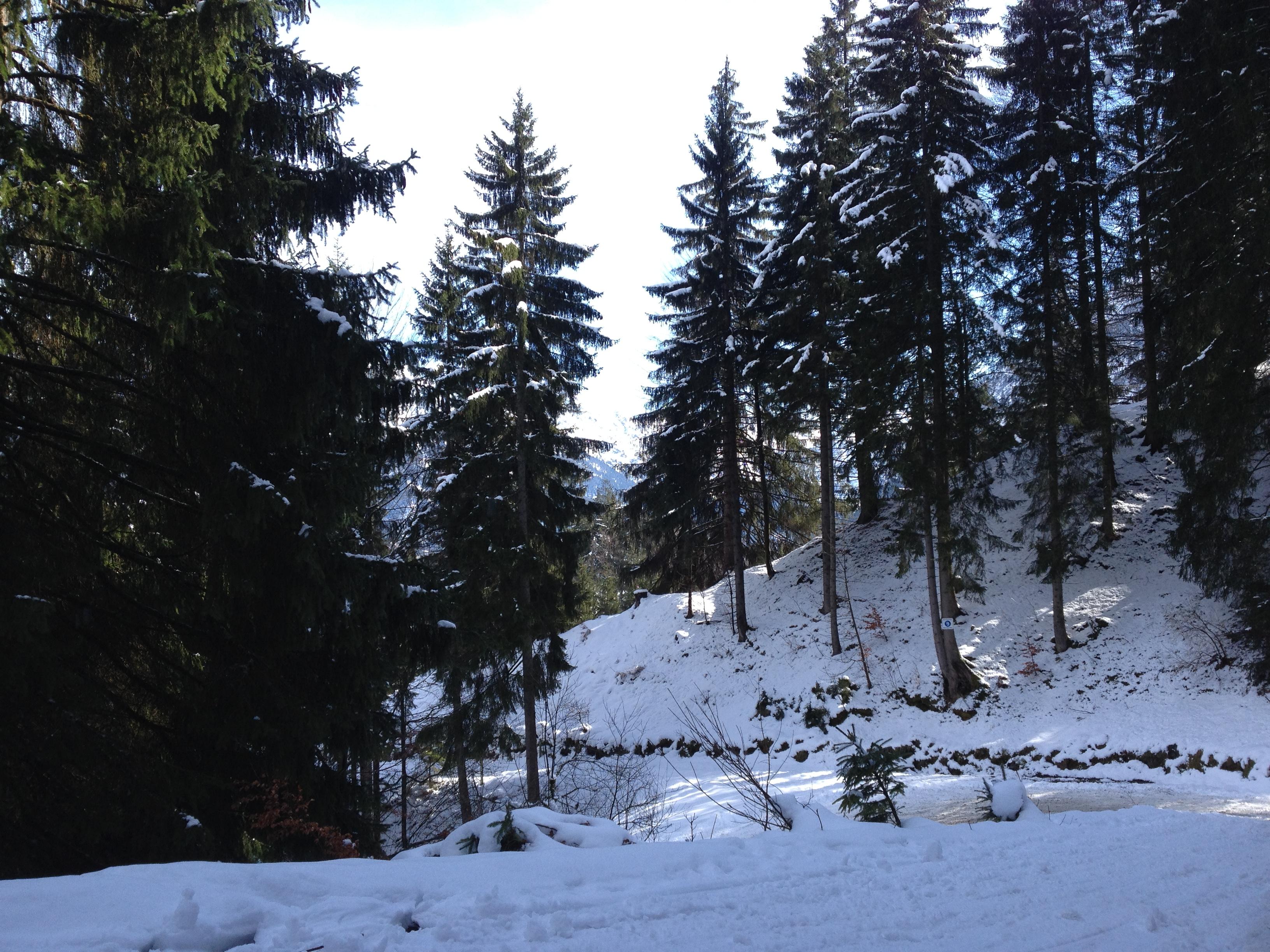 Photo Feb 27, 12 35 55