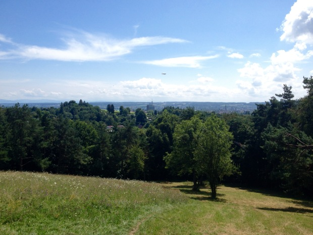 Konstanz from the Forest
