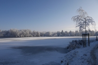 Snow in Bad Waldsee: Frozen Lake